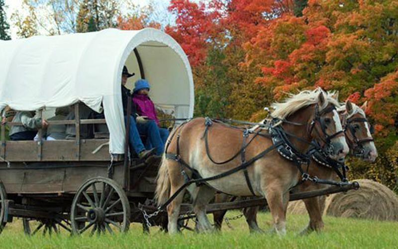 covered wagon tour Bemidji